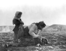 Η Γερουσία της Βραζιλίας αναγνώρισε ομόφωνα την Γενοκτονία των Αρμενίων